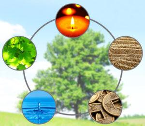 Fünf Elemente des Feng Shui